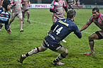 USO-Sale Sharks - 20131205 - Tom Brady.jpg