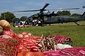 US Navy 050114-M-2725N-003 Sri Lankan citizens rush to unload a delivery of produce from an U.S. Air Force MH-60G Pave Hawk helicopter attached to Combined Support Group Sri Lanka.jpg