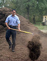 US Navy 051112-N-5006P-007 Interior Communications Technician 2nd Class Jose Rodriguez, assigned to Navy Recruiting District San Antonio, spreads mulch during a community service event.jpg