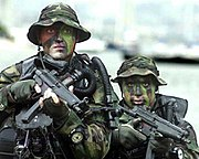 US Navy SEALs in from water.jpg