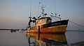 Un chalutier de pêche côtière (47).JPG