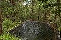 Un pozo de agua, Sendero Orquidea de Fuego, Tungurahua, Ecuador.jpg