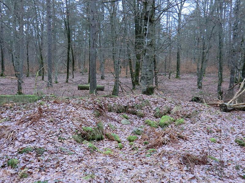 File:Växjö 38,2 130110.JPG