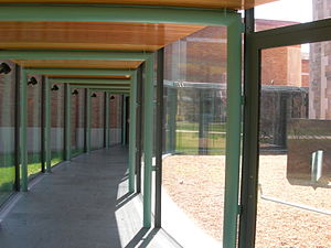 Frances Lehman Loeb Art Center - Curved glass entry
