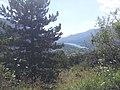 Veduta del Lago da sopra Villetta Barrea andando verso Passo Godi - opi1010.jpg