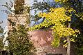 Vienna - Hundertwasser housing complex - 0427.jpg
