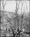 Vietnam.... Members of the 1st ARVN Division move along a trail during an assault operation near Fire Support Base... - NARA - 531466.tif
