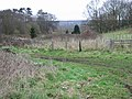View N from Well Lane - geograph.org.uk - 342826.jpg