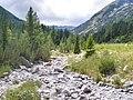 View from Pirin National Park.jpg