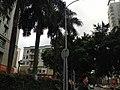 View in Nanshan, Shenzhen, Guangdong 2.jpg