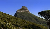 View to Lion's Head from slopes of Table Mountain.jpg