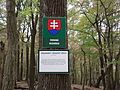 Viniansky hrad 010.JPG