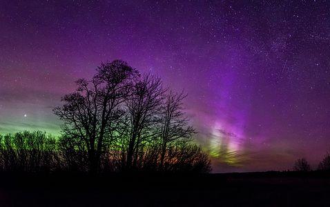 Aurora Borealis in Estonia
