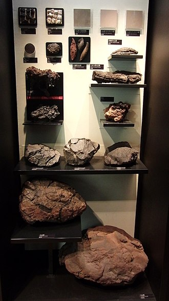 Volcanic bomb - Various volcanic bombs in the National Museum of Nature and Science, Tokyo, Japan.