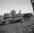 """Voz """"grozdovni legnarji"""" z vrnami, Slap 1958.jpg"""