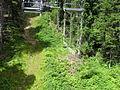 Vylet k Cernemu jezeru Sumava - 9.srpna 2010 5.JPG