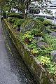 Wakasa elementary school02s4592.jpg