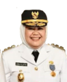 Wakil Gubernur Kepulauan Riau Marlin Agustina.png