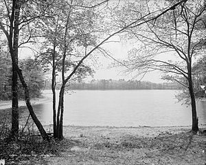 Walden Pond - Image: Walden Pond