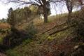 Wartenberg Landenhausen Trockenrasen Juniperus SCi 555520689 maint 5.png