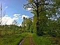 Weg - panoramio (22).jpg
