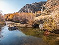 West Little Owyhee Wild and Scenic River (27091767167).jpg