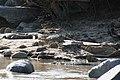Western Serengeti 2012 06 02 4066 (7557751996).jpg