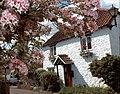 White Cottage, The Square, Alveston - geograph.org.uk - 477570.jpg