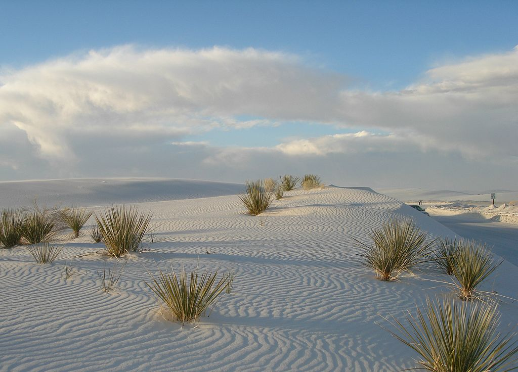 File:White Sands National Monument - New Mexico, USA 11 ...