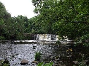 River Cart -  Waterfall at White Cart Water in Linn Park between Netherlee and Cathcart