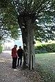 Wikipediens en observation naturaliste à la fontaine Saint-Viventien de Saint-Vincent-des-Prés - wiki takes le Saosnois.jpg