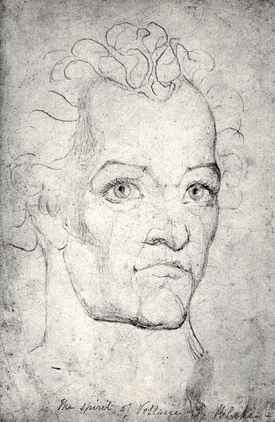 File:William Blake, Visionary Head of Voltaire c 1820.jpg