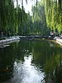 Willows, near TianAnMen Square (2915212730).jpg