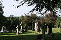 Wilnecote Old Cemetery (3) - geograph.org.uk - 1568795.jpg