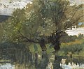 Winslow Homer - Pond and Willows, Houghton Farm (1878).jpg