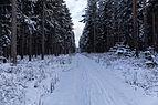 Winter, Naturschutzgebiet Assberg-Hasenleite, Thüringen, 160116, ako.jpg
