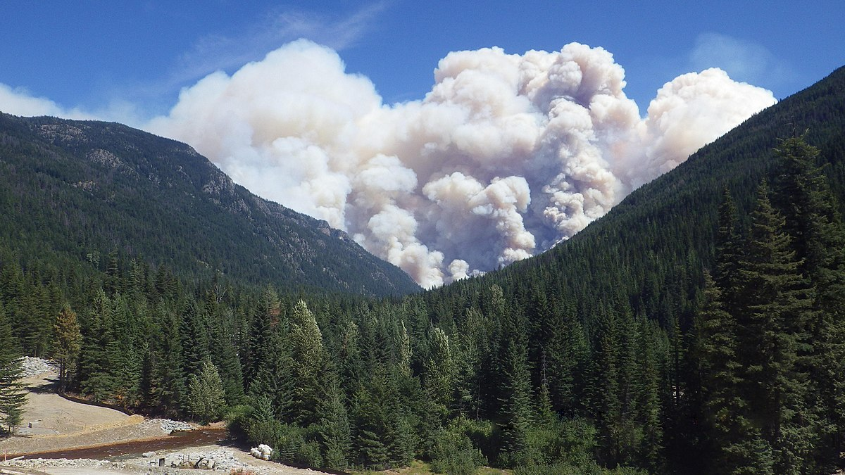 2015 Washington Wildfires Wikipedia