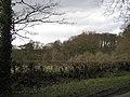 Woodland north of Haseley Green - geograph.org.uk - 1777631.jpg