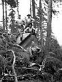 Woods crew standing on log, Manary Logging Company, Toledo, ca 1925 (KINSEY 2412).jpg