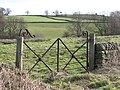 Wrought-iron gate to pastures near Shilburn Road - geograph.org.uk - 707913.jpg