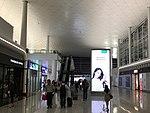 Wuhan Tianhe Airport T3 4.jpg