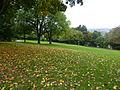 Wuppertal Hardt 2013 369.JPG