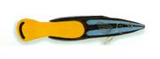 XRF-Labroides bicolor