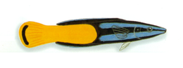 XRF-Labroides bicolor.png
