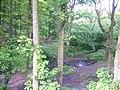 Yeadon Gill, running through Gill Wood - geograph.org.uk - 11821.jpg
