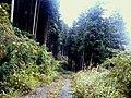 Yukicho Oaza Tada, Saeki Ward, Hiroshima, Hiroshima Prefecture 738-0721, Japan - panoramio (23).jpg