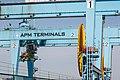 Zeebrugge Belgium Portal-crane-APM-Terminals-01a.jpg