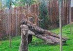 Zoo de Lisboa by Juntas 70.jpg