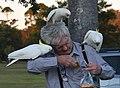 (1)Man feeding birds-1.jpg