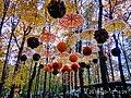 «Фельдман-Екопарк»-регіональний ландшафтний парк у Дергачівському районі Харківської області(15).jpg
